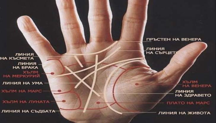 Линията на ръката