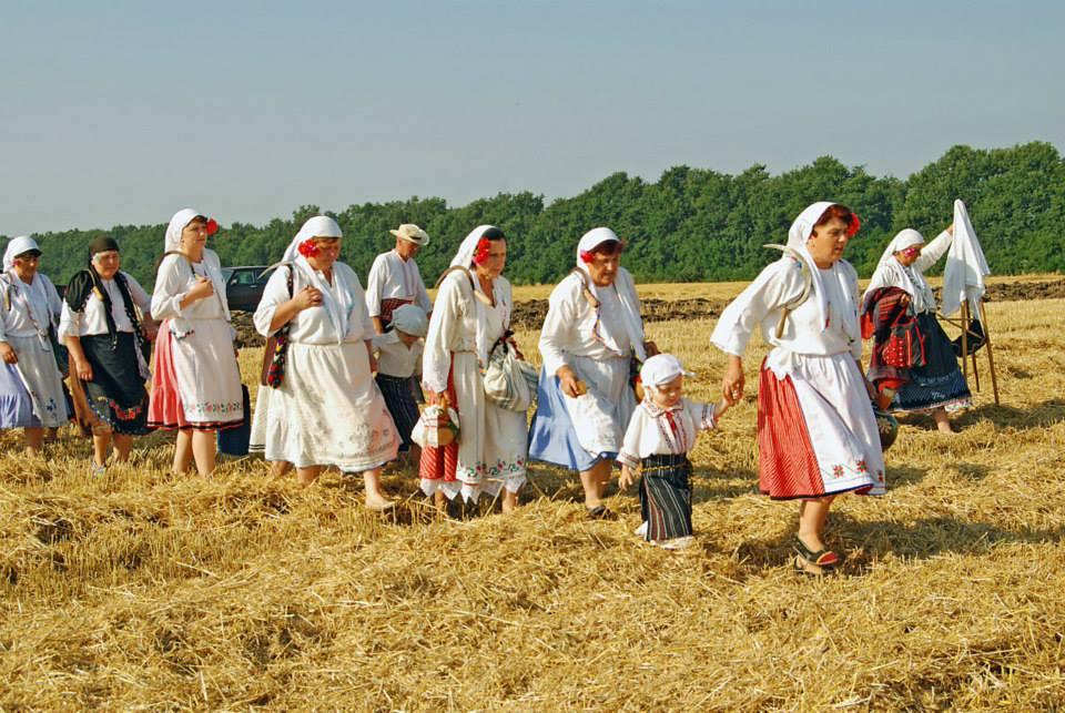 Жътва на село