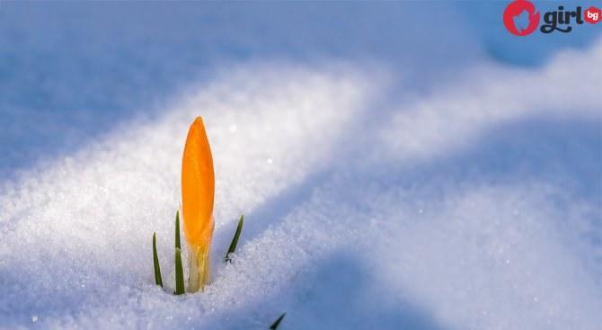 прогноза за времето март