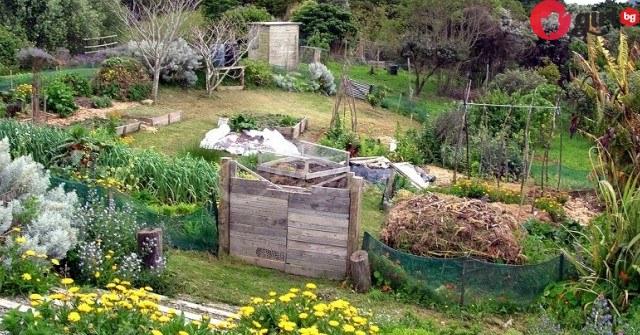 сапун в градината