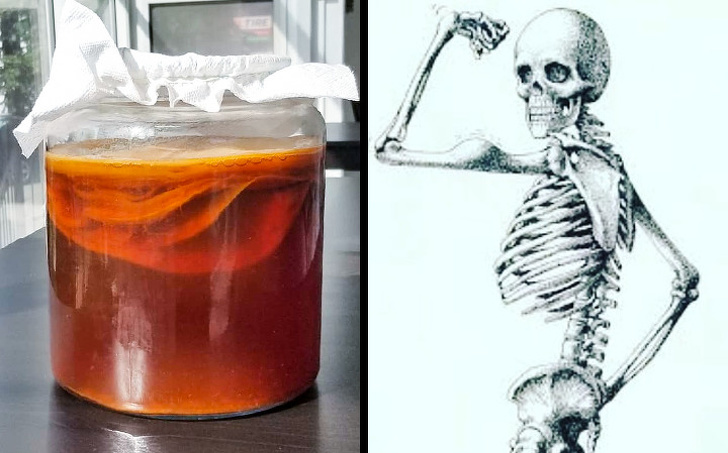 Какво може да се случи с Вашето тяло, ако пиете 2 чаши комбуча всеки ден
