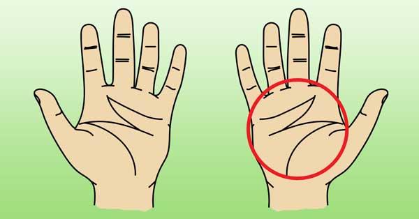 Специални знаци какво говорят буквите върху дланите ви